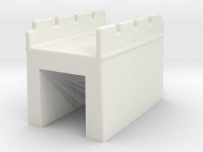 the great wall of china 1/350 s  in White Natural Versatile Plastic