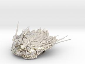 Trilobite - Kettneraspis prescheri in Rhodium Plated Brass