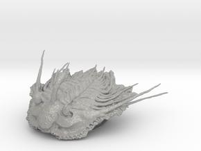 Trilobite - Kettneraspis prescheri in Aluminum