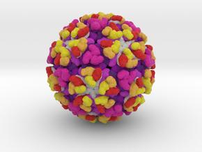 Eastern Equine Encephalitis Virus in Natural Full Color Sandstone