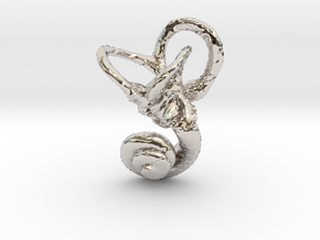 Human Inner Ear Pendant in Rhodium Plated Brass
