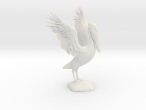 Pelican Model in White Natural Versatile Plastic