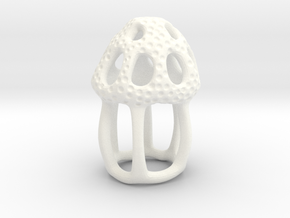Dictyocysta lepida Model 5cm  in White Processed Versatile Plastic