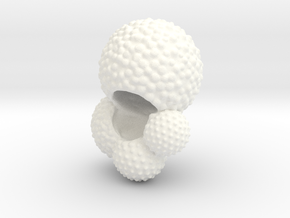 Globigerina Foraminiferan Model 5cm  in White Processed Versatile Plastic