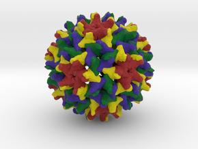 Woodchuck Hepatitis Virus in Natural Full Color Sandstone