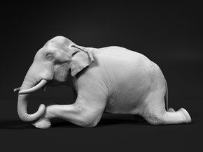 Indian Elephant 1:9 Kneeling Male in White Natural Versatile Plastic