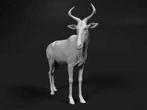Swayne's Hartebeest 1:12 Standing Male in White Natural Versatile Plastic