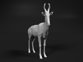 Lelwel Hartebeest 1:25 Standing Male in White Natural Versatile Plastic