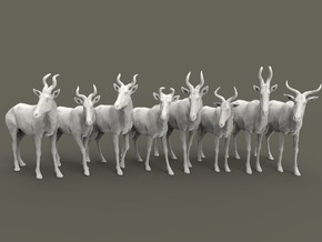 Hartebeest Set 1:87 eight different subspecies in Smooth Fine Detail Plastic