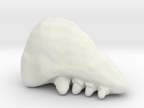 Starship Troopers BrainBug miniature smaller versn in White Natural Versatile Plastic