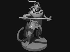 Tiefling Two Sword Ranger in Smooth Fine Detail Plastic