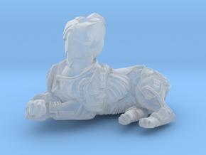 Anthropomorphic male heavy armor cat taur 2 (HSD m in Smooth Fine Detail Plastic