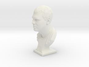 Male Bust (Dmitry) in White Natural Versatile Plastic