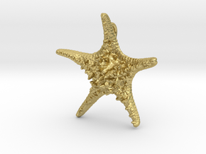 Knobby Starfish Pendant in Natural Brass