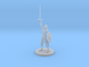 Female Elf Paladin with Sword and Round Shield in Smooth Fine Detail Plastic