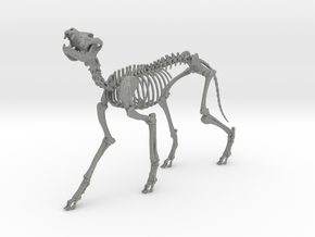 Skeletal Wolf (Howling) in Gray PA12