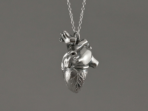 Annatomical Heart Pendant in Polished Silver