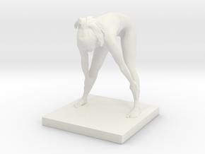 Printle N Femme 870 - 1/24 in White Natural Versatile Plastic