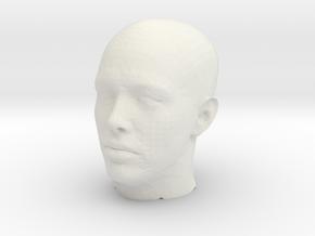 InputImage in White Natural Versatile Plastic