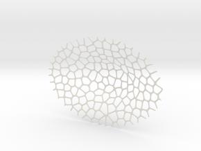 Fruit Bowl  in White Natural Versatile Plastic