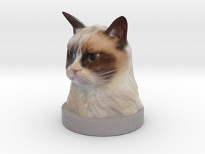 Grumpy Cat in Natural Full Color Sandstone