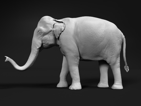 Indian Elephant 1:72 Standing Female 2 in Smooth Fine Detail Plastic