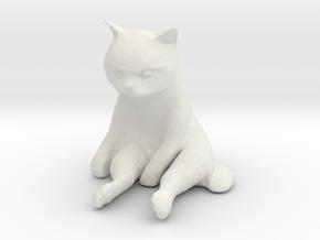 1/6 Grumpy Cute Cat Sitting in White Natural Versatile Plastic