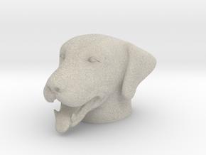 Dog - Panting in Natural Sandstone