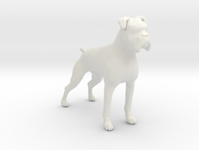 Brindle Boxer 1/24 in White Natural Versatile Plastic