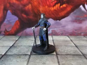 Dhampir Adventurer in Smooth Fine Detail Plastic
