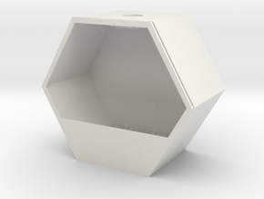 Hexagonal Planter for Succulents in White Natural Versatile Plastic