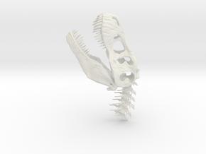 Tyrannosaurus Rex Skull- dinosaur head in White Natural Versatile Plastic