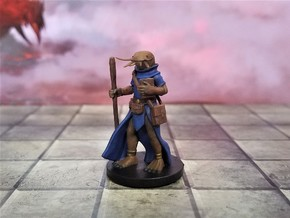 Fishfolk Cleric in Smooth Fine Detail Plastic