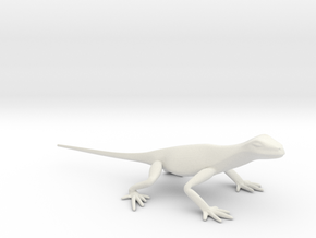 Lizard 8 small in White Natural Versatile Plastic