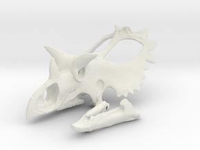 Utahceratops Skull- 1/18th scale replica in White Natural Versatile Plastic: 1:18