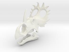 Sinoceratops Skull in White Natural Versatile Plastic: 1:18