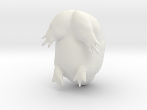 A Very Sad Rain Frog in White Natural Versatile Plastic