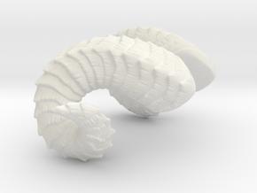 """Small Curled Horns   """"Laura"""" in White Natural Versatile Plastic: Medium"""