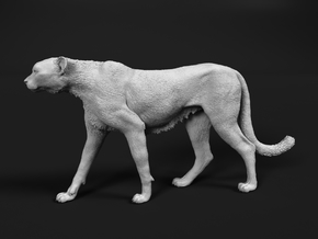 Cheetah 1:16 Walking Male 5 in White Natural Versatile Plastic