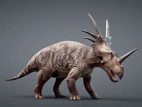 Styracosaurus 1/50 or 1/25 Scale Model - Colored in Natural Full Color Sandstone: Small