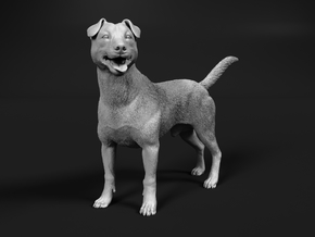 Jack Russell Terrier 1:64 Standing Male in Smooth Fine Detail Plastic