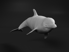 Bottlenose Dolphin 1:120 Swimming 1 in Smooth Fine Detail Plastic