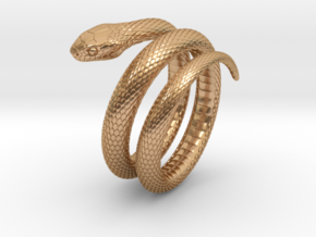 Snake Ring_R01 in Polished Bronze: 8 / 56.75