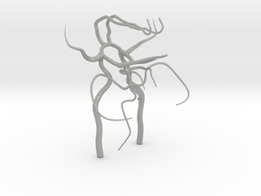 Circle of willis - brain vasculature 3d model in Aluminum