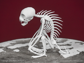 Chupacabra Skeleton  in White Natural Versatile Plastic