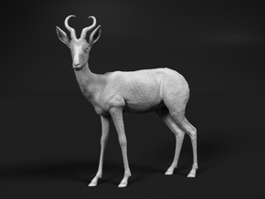 Springbok 1:87 Standing Male in Smooth Fine Detail Plastic