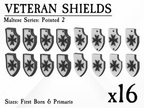 16X Veteran shields. Black Templar, Point 2 in Smooth Fine Detail Plastic: Small