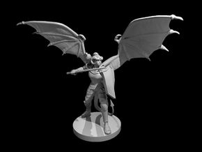 Tiefling Female Paladin Winged in Smooth Fine Detail Plastic