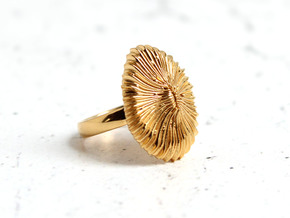 Fungia Coral Ring - Marine Biology Jewelry in 14k Gold Plated Brass: 7 / 54