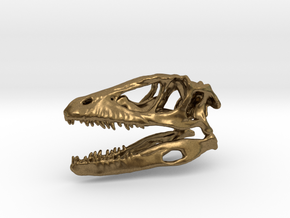 Mini Raptor Dinosaur Skull in Natural Bronze